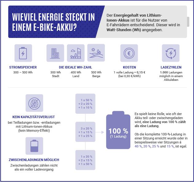Grafische Darstellung von Daten und Informationen zum Energiegehalt von E-Bike-Akkus auf Lithium-Ionen-Basis