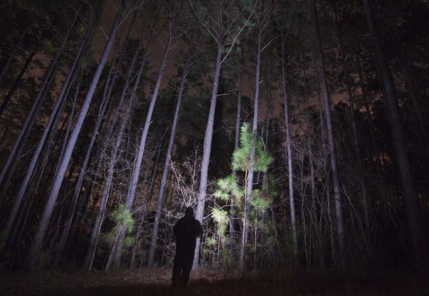 Bringt Licht ins Dunkle: Die Taschlampe. Bildquelle: ©iStock.com/jdwfoto