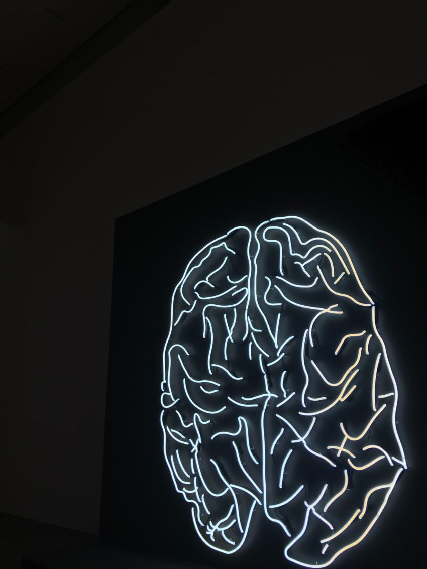 Gehirn mit LED-Beleuchtung an Wand Medizintechnik Akkus